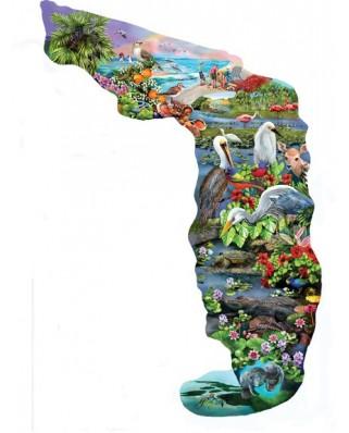 Puzzle contur SunsOut - Mary Thompson: Florida Wildlife, 845 piese (64396)