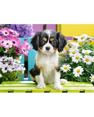 Puzzle Castorland - Spaniel Puppy In Flowers, 70 piese (70053)