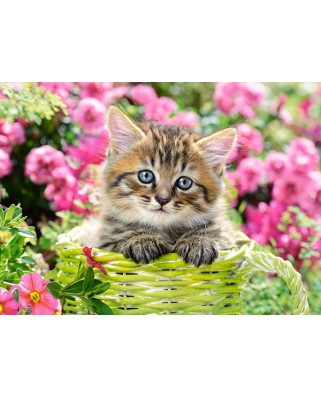 Puzzle Castorland - Kitten In Flower Garden, 100 piese (111039)