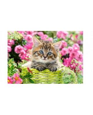 Puzzle Castorland - Kitten In Flower Garden, 500 piese (52974)