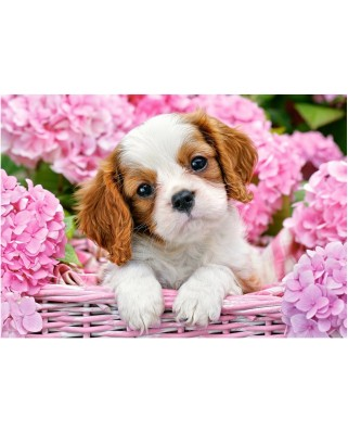 Puzzle Castorland - Pup In Pink Flowers, 500 piese (52233)