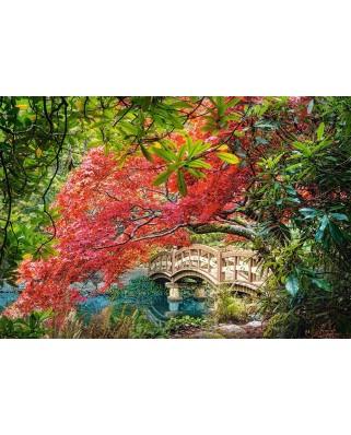 Puzzle Castorland - Japanese Garden, 1.000 piese (103768)
