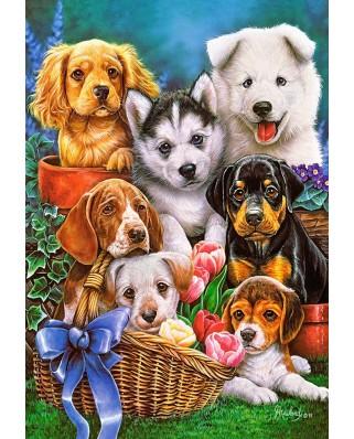 Puzzle Castorland - Puppies, 1.000 piese (104048)