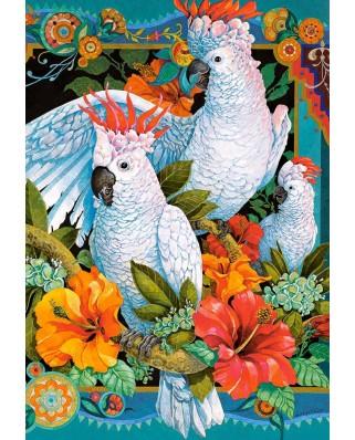 Puzzle Castorland - Galchutt David: Tropical Trio, 1500 piese (151714)