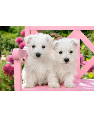 Puzzle Castorland - White Terrier Puppies, 1500 piese (151721)
