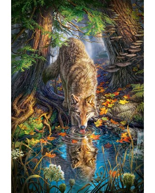 Puzzle Castorland - Wolf In The Wild, 1500 piese (151707)