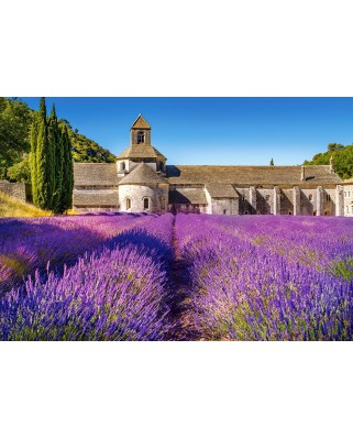 Puzzle Castorland - Lavender Field in Provence, 1000 piese (104284)