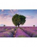Puzzle Ravensburger - Valensole Franta, 500 piese (14353)