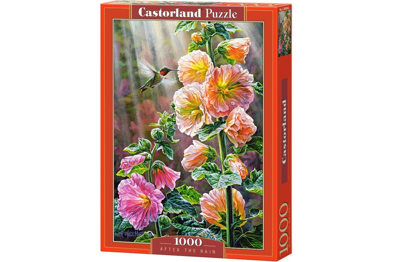 Puzzle Castorland - After the rain, 1000 piese