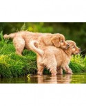 Puzzle Castorland - Puppies by the river, 60 piese
