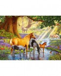 Puzzle Castorland - Horse by the stream, 300 piese