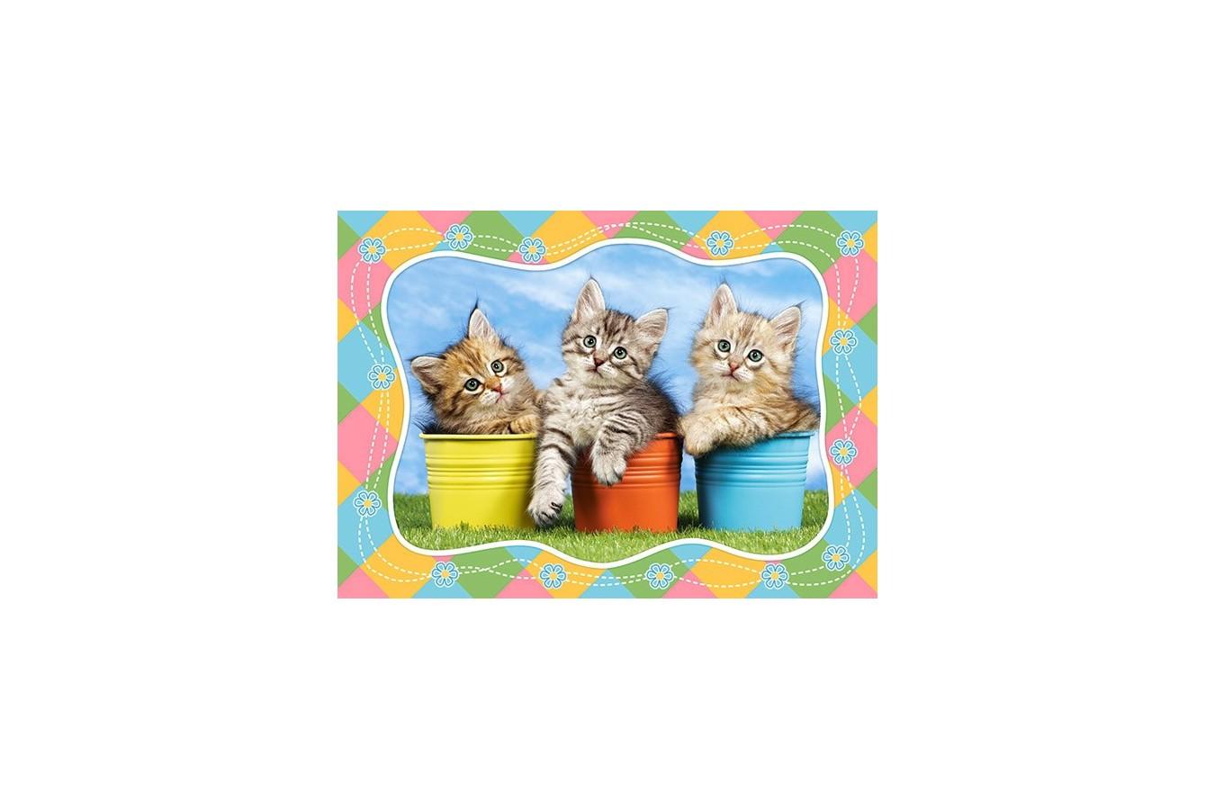 Puzzle Castorland - Siberian Kitties in Flowerpots, 60 piese