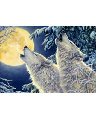 Puzzle Bluebird - Moonlight, 1.000 piese (70071)