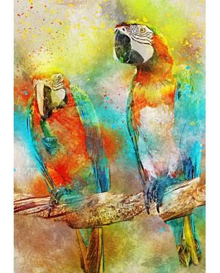 Puzzle Bluebird - Parrots, 1.000 piese (70032)