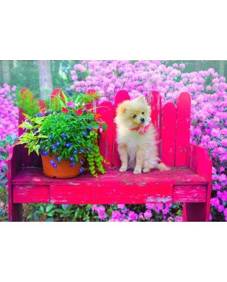 Puzzle Bluebird - Puppy In The Colorful Garden, 500 piese (70042)