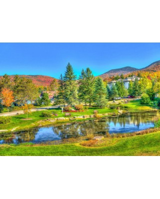 Puzzle Bluebird - Stowe, Vermont, Usa, 1.000 piese (70023)