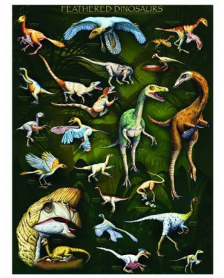 Puzzle Eurographics - Feathered Dinosaurs, 1.000 piese (6000-0072)