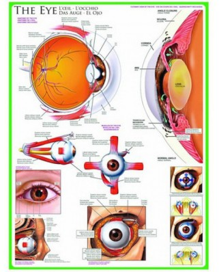 Puzzle Eurographics - The Eye, 1.000 piese (6000-0260)