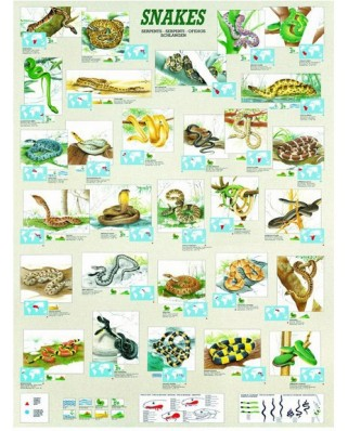 Puzzle Eurographics - Snakes, 1.000 piese (6000-2610)