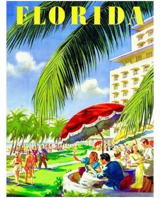 Puzzle Eurographics - Florida, 1.000 piese (8000-0398)