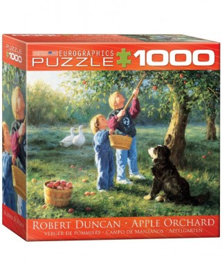 Puzzle Eurographics - Robert Duncan : Apple Orchard, 1.000 piese (8000-0727)