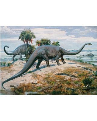 Puzzle Dino - Dinosaurs, 1.000 piese (62937)