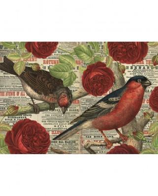 Puzzle Jumbo - Birds love flowers, 500 piese (18398)