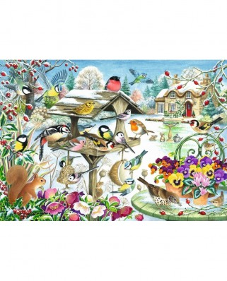 Puzzle Jumbo - Claire Comerford: Winter Garden Birds, 500 piese (11183)