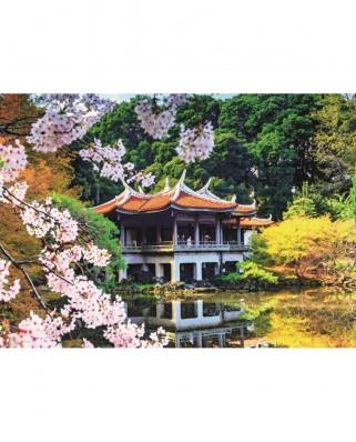 Puzzle Jumbo - Flowers in Japan, 1.000 piese (18361)