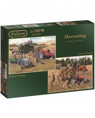Puzzle Jumbo - Harvesting, 2x500 piese (11124)