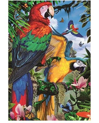Puzzle Jumbo - Pretty Parrots, 1.000 piese (18330)