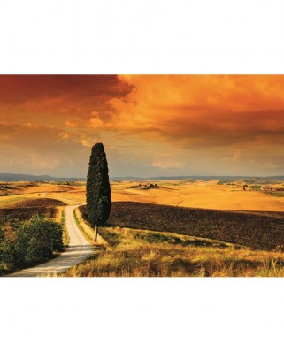 Puzzle Jumbo - Sunset in Tuscany, 1.000 piese (18362)