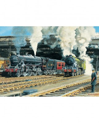 Puzzle Jumbo - Trevor Mitchell: Full Steam Ahead, 500 piese (11120)
