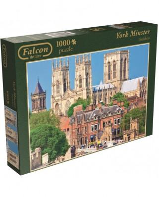 Puzzle Jumbo - York Minster, 1.000 piese (11074)