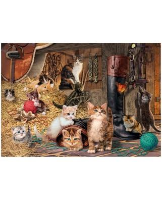 Puzzle Dino - Secret Puzzle - Kittens, 1000 piese (62969)