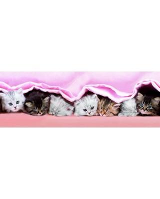 Puzzle panoramic Dino - Kittens, 150 piese (62908)