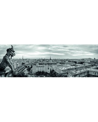 Puzzle panoramic Dino - Paris, France, 1.000 piese alb-negru (62988)